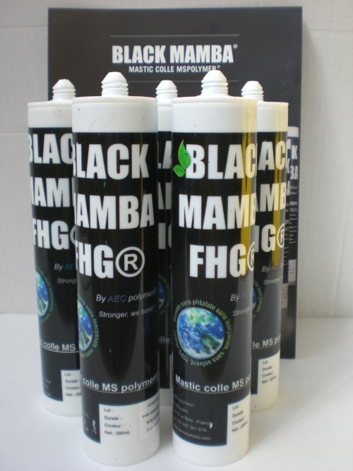 Black_Mamba_FHG.jpg